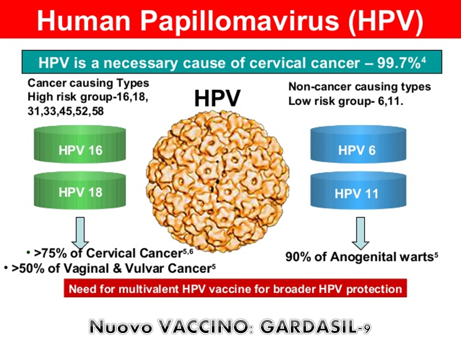 Hpv high risk not 16 18 detected