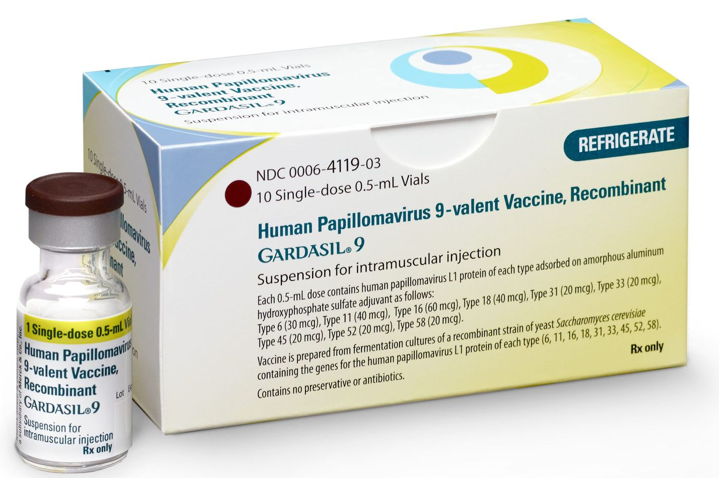 Hpv vaccine meaning in hindi.