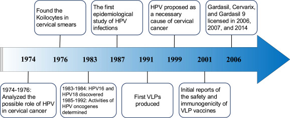 hpv manner labor hepatic cancer deaths