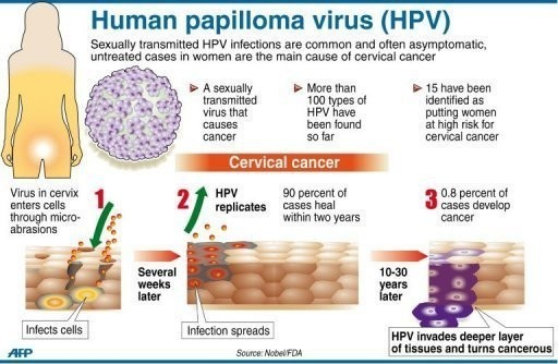 hpv high risk and abnormal pap hpv treatment montreal