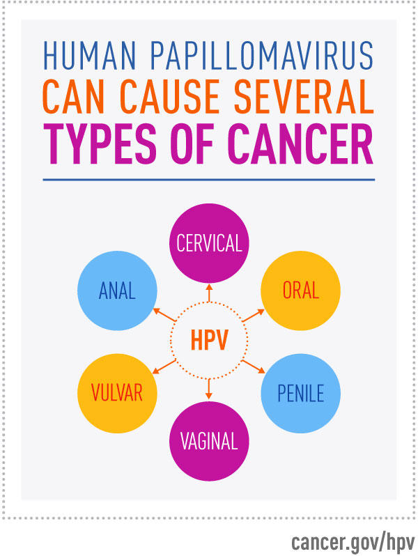 hpv high risk cancer
